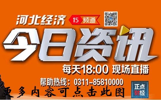 今日资讯_河北经济频道直播今日资讯