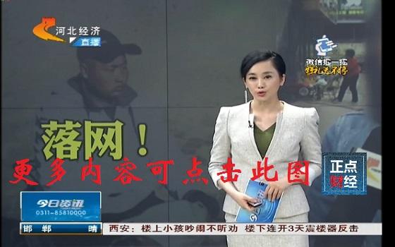 河北经济频道直播警方报道