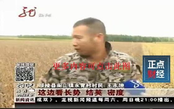 黑龙江电视台新闻频道回看