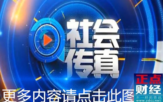 真情追踪栏目_社会传真回放_社会传真新闻